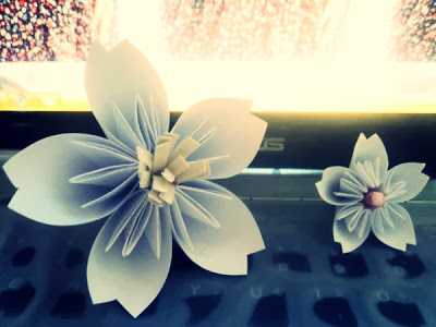 gap hoa anh dao
