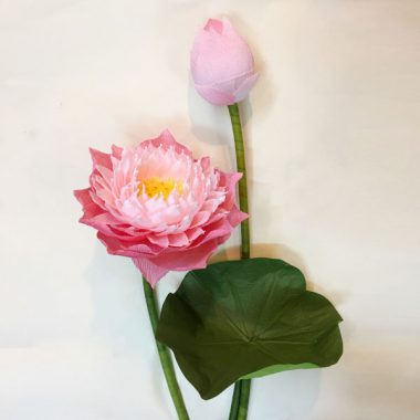 hoa sen giấy thanh tiên